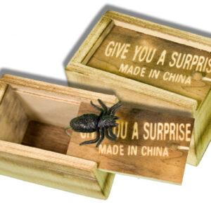 Boxed Insect : Joke Shop Australia : Surprise Novelty : Spider Joke : Magic Shop Australia