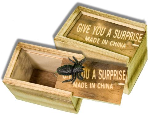 Boxed Insect : Surprise Novelty : Spider Joke : Magic Shop Australia
